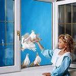 Окна ПВХ – нужны ли они детям?